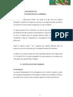 PERFIL-DIAGNOSTICO-PROPUESTA.docx