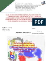 PROYECTO COMUNIDAD NUEVA ESPARTA  II CUARTO SEMESTRE ALDEA MALPICA original.ppt