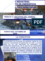 TEMA 2 Industria del Carbon.pptx