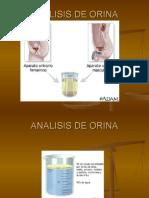 1. Analisis de Orina