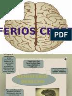 Hemisferioscerebrales Metodos 120430203659 Phpapp02