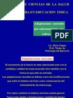 Adaptaciones  Neurales.pptx