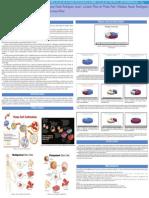 Poster A influencia da religiao em relação as atuais pesquias sobre celuas tronco em Morrinhos GO.pdf