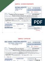 Formato de Recibo Honorarios (1)