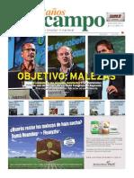 diario info campo