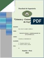 Crianza y Ventas de Cuyes Huacho