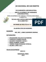 Informe# 6 Biodiesel-1.Biodiesel