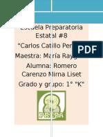 C AMBIENTE EXCEL ( Romero Carenzo Mirna Liset)