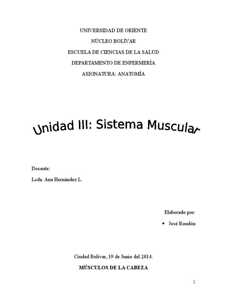 Los musculos, anatomia.docx