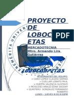 Proyecto de Mercadotecnia - Carpetas