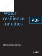 Arup Water Resilience for Cities