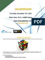Meshing Workshop 2014