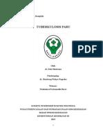 Portofolio TBC Paru-Desi