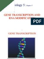 2014 Transcription Biology 5