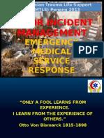 MTLS - Major Incident 2013