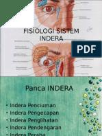 Fisiologi Sistem Indera