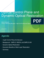 Optical Control Plane and Dynamic Optical Restoration