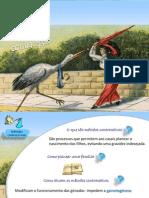 Contracepcao_14.pdf