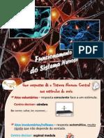 Atos_voluntarios_e_atos_reflexos.pdf