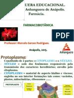 Aula 3 - ProtoPlasma