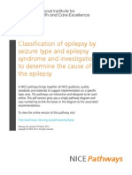 Epilepsy Classification