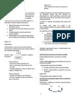 Alimentação das plantas e fotossíntese - resumo.pdf