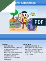 Higiene Ambiental II