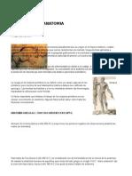 Breve Historia de La Anatomia