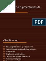 Lesiones No Pigmentarias de La Piel
