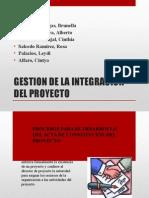 Gestion de La Integracion Project