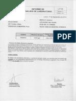 Análisis de Contenido de Arsenico en El Agua de San Vicente - Buenos Aires