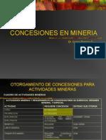 7. Concesiones en Minería