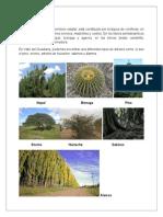 Flora y Fauna Valle Del Guadiana