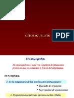 Cito (1)