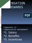 Compensation and Rewards