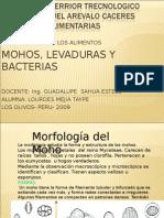 Mo Hos Leva Duras y Bacterias