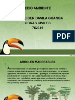 jose arboles maderables.ppt