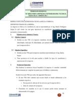 TDR empresa consultora.doc