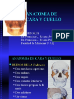 (1)Anatomía de Cara y Cuello