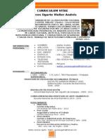 CURRICULUM_VITAE Walter Caceres Ugarte SST