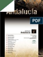 rupestre_Andalucia_CARP.pdf