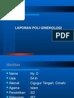 Polgin