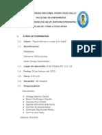 PLAN DE CHARLA RN 2015-FINAL.docx