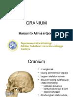 cranium.ppt