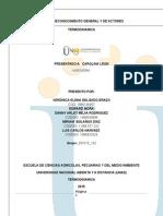 Pre- Consolidacion Docx
