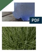 Imagenes sobre evaporación