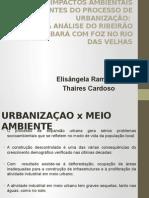 OS IMPACTOS AMBIENTAIS DECORRENTES DO PROCESSO DE URBANIZAÇÃO