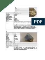 100 Minerales