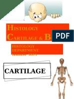 DMS2 - K3 - Histology of Cartilage & Bone