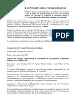 Declaracion Consejo Plurinacionl